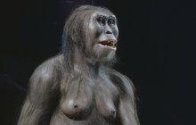Vědci rozlouskli tajemství 3,2 miliony let staré kostry australopithéka!
