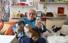 Těžký život důchodců! Hana Radová (61): Na den mám 17 Kč...