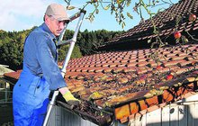 Před zimou myslete na střechu!