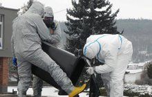 Nákaza se rozšířila na Náchodsko i Prahu: Ptačí chřipka postupuje!