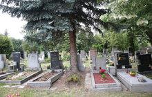Velká zpráva o pohřebních službách: Jak se podvádí s nebožtíky?