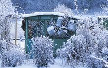 Zahrada žije i v zimě!