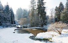 V zimě zahrada odpočívá, v ideálním případě pod sněhem, ale to neznamená, že nepotřebuje naši pomoc a pozornost. Co nesmíte zanedbat, abyste na jaře nelitovali?