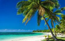Politici z Bruselu vegetí i za naše peníze: »Dřina« na Fidži za 27 milionů!