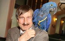 Světový unikát! O přátelství Vydry a papouška