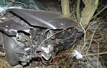 Opilec (34) má jen pár šrámů: Autem přerazil strom!   ...a vyletěl oknem ven