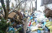 Odpadky zasypal domek i zahradu: V hromadách rejdí myši a potkani!