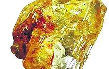 Pastor našel a odevzdal obří klenot: Diamant má 706 karátů!
