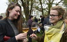 Víno jako ve starověku: Má až 15 procent alkoholu!
