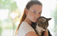 Kočky nesou smrt: Nový virus budí obavy