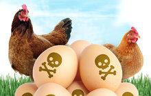 KAUZA toxických vajec: Jedli je i pacienti v nemocnicích!