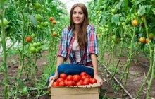 Rajčaty ku zdraví: 7 důvodů, proč si je zamilovat!
