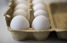 Kauza toxických vajec: Kde jsou  vejce s jedem? Má je 130 provozoven!