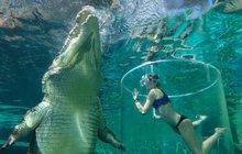 V Austrálii vás ve skleněné kleci ponoří do krokodýlí jeskyně: Pohleď smrti do očí!