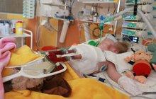 Batoleti proudila krev »bez srdce«: Teď má nové!