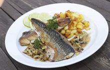 VAŘÍME CVALEM S MICHALEM: Makrela nemusí být jen uzená! Zkuste si ji připravit na víně podle receptu šéfkuchaře Michala.