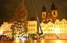 Svátky v Praze na »Staromáku« začínají: Vánoční strom už stojí!