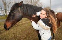 Patricie Pitříková (45) pečuje o staré, nemocné nebo týrané koně.