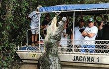 Na turisty vybafl tunový krokodýl!