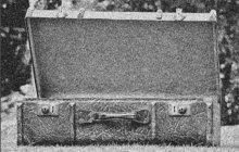 Se zoufalým pláčem a s kufrem v ruce přišla v roce 1895 do budovy litoměřického soudu služebná Josefa L. (21). Ohlásila, že v kufru již nějaký čas nosí mrtvolku novorozeněte, které sama zabila.