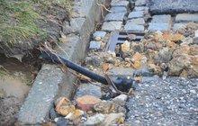 Vodovodní potrubí prasklo v sobotu odpoledne kvůli mrazu v olomoucké čtvrti Nová Ulice.