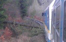 Důchodce (70) způsobil dvě nehody vlaků...je obviněn z terorismu!