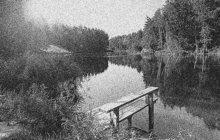 Záhadné zmizení mladé profesorky Růženy C. z Brna vzrušilo v červnu 1931 celou jižní Moravu. Soudilo se, že její mrtvola může ležet na dně rybníka zvaném Budkovan u Jedovnic na Blanensku. Na jeho břehu se totiž našly dámské šaty.