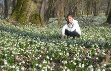 Jaro začalo alespoň v parku u Nového zámku v Kostelci nad Orlicí. Rozkvetly v něm desetitísce bledulí i žlutých talovínů a dalších jarních rostlin.