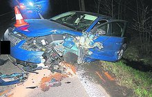 Divoké prase vběhlo pod kola vozu Škoda Octavia v zatáčce u obce Výšinka na Trutnovsku. Nehodě už nemohl řidič zabránit.