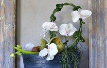 Vyrobte si květinové dekorace na celý rok!