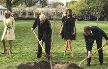 Záhada francouzsko-amerického přátelství: Co Trump zasadil, zahradník vykopal...