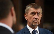 Členové ČSSD se vysloví v referendu. Babiš hrozí: Berte vládu, nebo nové volby!