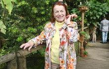 Iva Janžurová (76):  Přiznání o nové lásce