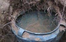 Muž si šel loni v září u obce Kladina na Pardubicku pro trochu písku do akvaria a ze země vyhrabal bronzovou nádobu. Později se dozvěděl, že je stará 3000 let.