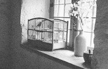 Román Pražský kat a další »krváky« byly oblíbenou četbou Josefa N. ze Záběhlic. Známý silák, který se živil na nádraží skládáním uhlí, navíc rád a často popíjel alkohol. Patrně kombinace obou »zálib« byla příčinou jeho vražedného amoku – 22. dubna 1908 zabil svou ženu i syna.