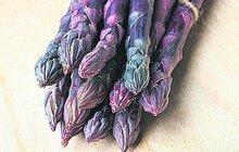 Ochutnejte fialový chřest!