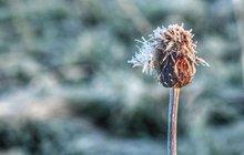 Po rekordně ledovém rozjezdu prázdnin...Znovu přijdou tropy!