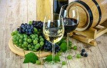 Nelenošte, bavte se! Zajeďte si třeba za rysem na Kvildu, nebo si zpříjemněte páteční odpoledne dobrým vínem na Pardubickém zámku.