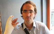 Čtyřhvězdičkový hotel v Tunisku se pro Jiřího Buchtu (34) stal noční můrou! Poté, co si stěžoval na stav areálu, dostal nakládačku od personálu. Cestovní kancelář ale hotel nabízí dál. Personál prý měl naopak napadnout sám český turista!