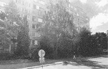 Život mladé ženě (25) zachránili v březnu 1970 na jednom ze sídlišť v Nymburku sousedé. Když zoufale volala o pomoc, vyrazili dveře bytu a doslova nešťastnici vytrhli z rukou jejího běsnícího manžela. Ten byl rozhodnutý ženu zabít.
