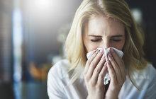 Chřipková epidemie je na spadnutí. Lékaři už bojovali o život 39 nemocných, sedm z nich chřipka zabila a počty nakažených stále rostou.