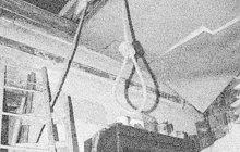 Strašlivá tragédie otřásla obcí Hromnice a celým okolím Horní Břízy na Plzeňsku v lednu 1928. Jistá Marie Š., mladá matka (†22), tam nejprve prořízla hrdlo své maličké dcerušce (†6 měsíců) a poté si sama vzala život.