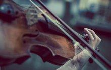 Nelenošte, bavte se! Vzdat se můžete na výstavě symbolů zemských a moravských v Rajhradě. Příjemné chvíle strávíte na houslovém koncertě Jůlie Svěcené.