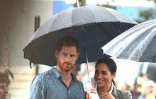 Trápí vás letošní sucho a potřebujete nutně zavlažit zahrádku? Pozvěte si prince Harryho (34)!