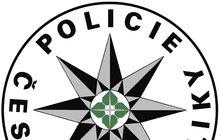 Zfackoval zloděje při výslechu a teď...Policajt spáchal sebevraždu!