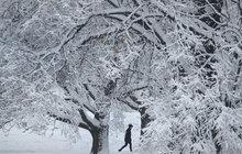 Z předpovědi meteorologů mrazí: Spas se, kdo můžeš!