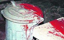 Šok zažil ráno ve Šlapanicích na Brněnsku muž. Před jeho domem byly velké krvavé skvrny.