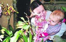 Záplavy květů roztodivných barev i vůní obsadily sály Jihočeského muzea v Českých Budějovicích. Tisícovku orchidejí, bromélií, sukulentů a dalších exotických rostlin tu mají lidé na dosah. Stačí jen přivonět.