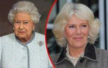 OCHRANKA V AKCI: Alkoholem posilněná Camilla prý zaútočila na Alžbětu