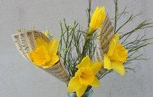 Jarní inspirace od designérky Martiny: Narcisy v kornoutku...